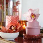 Bloemen | Ideeën met de Cymbidium orchidee