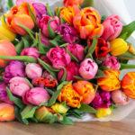 Zeggen tulpen iets over je persoonlijkheid?