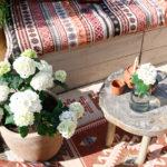 Project tuin: opleuken met Hortensia's